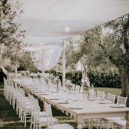 foto matrimonio matrimonio sotto gli ulivi